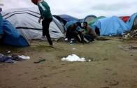 Saleh's Tent