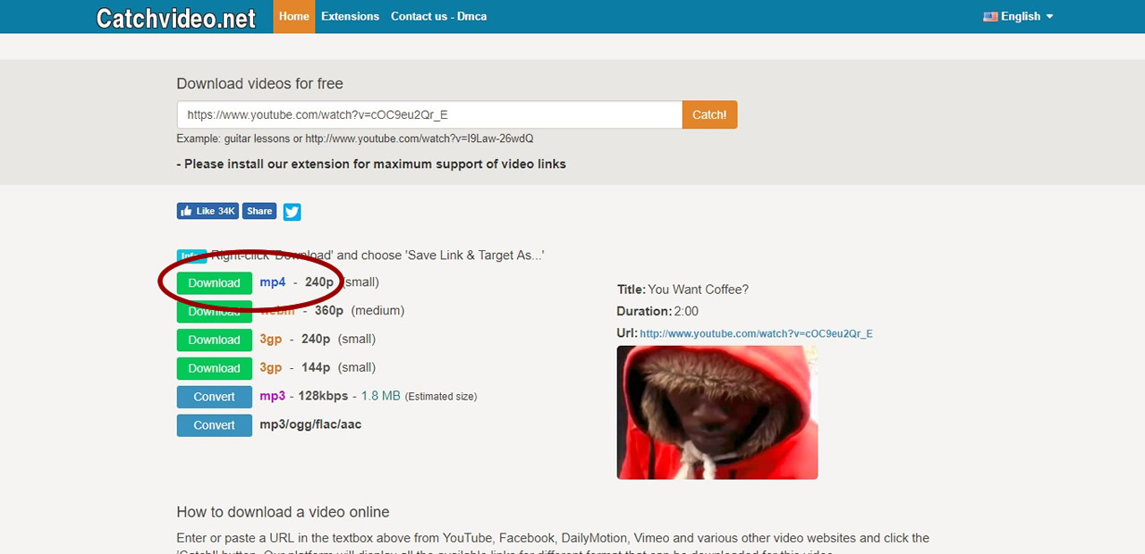 How to download MP4 from CatchVideo